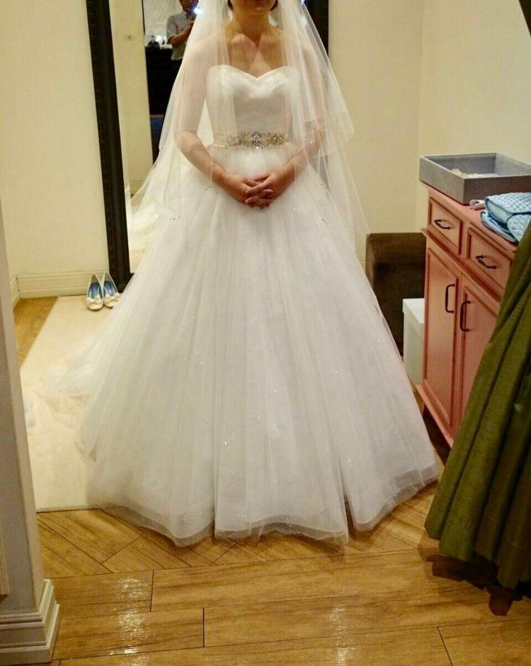 Aラインのキラキラしたドレス