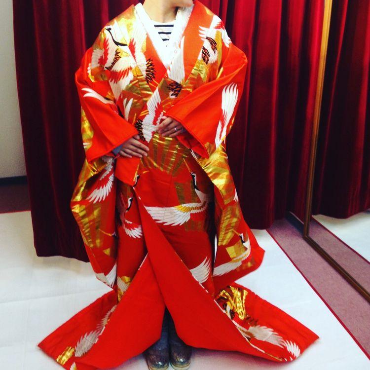真っ赤で鶴の色打掛