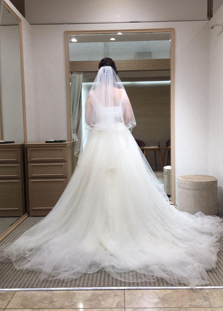 全身チュールのふんわりしたドレス