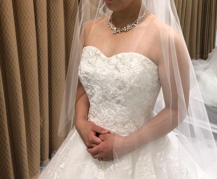 キラキラした上品な刺繍とふわふわチュールのドレス