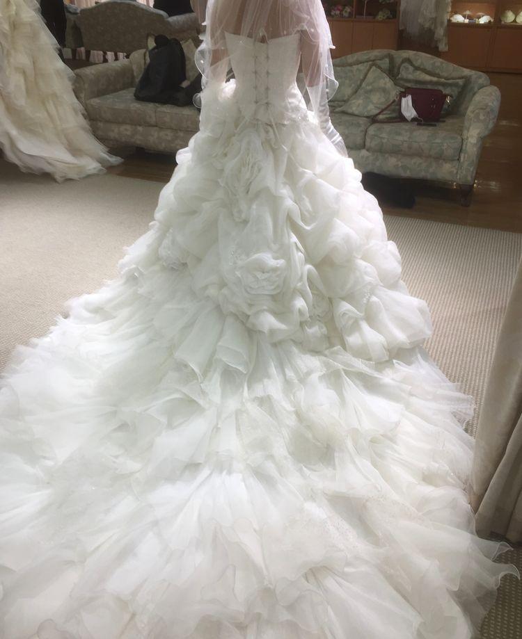 薔薇の豪華なドレス