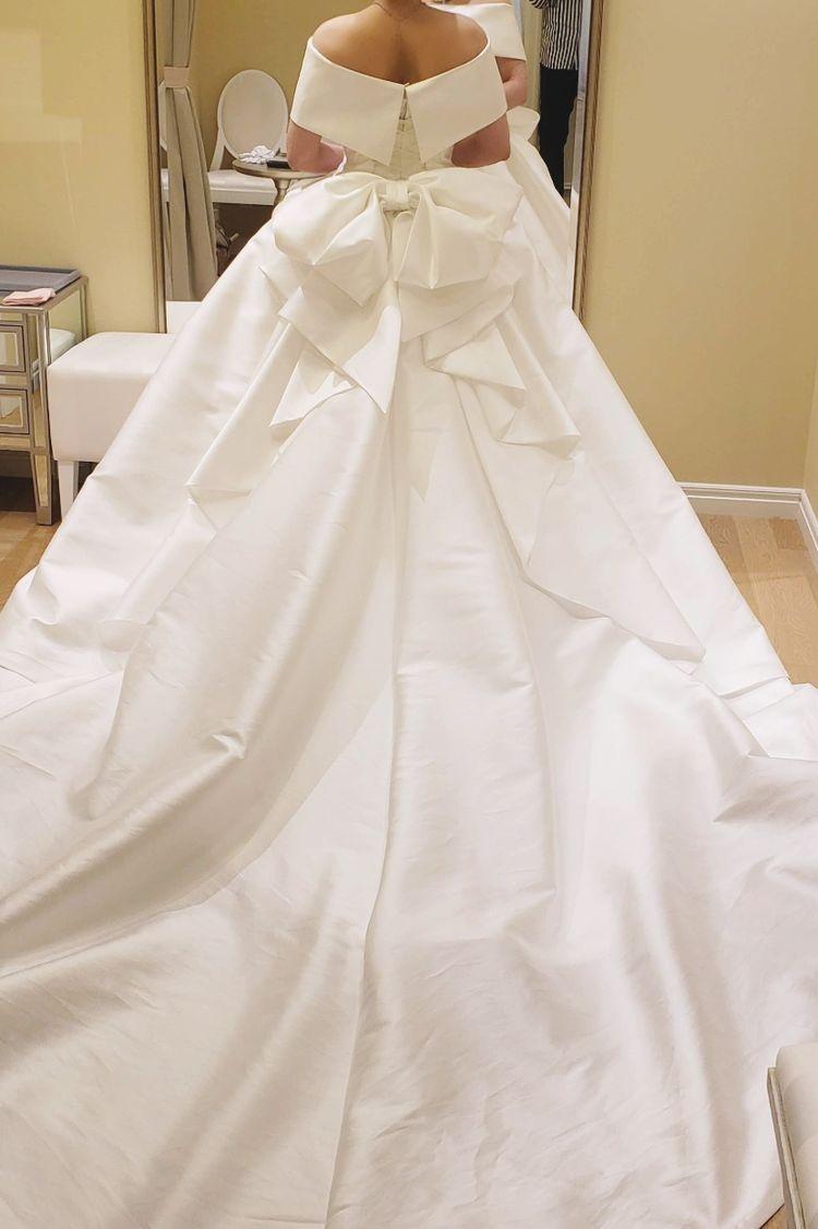 お袖がつけられる、ボリュームのあるドレス