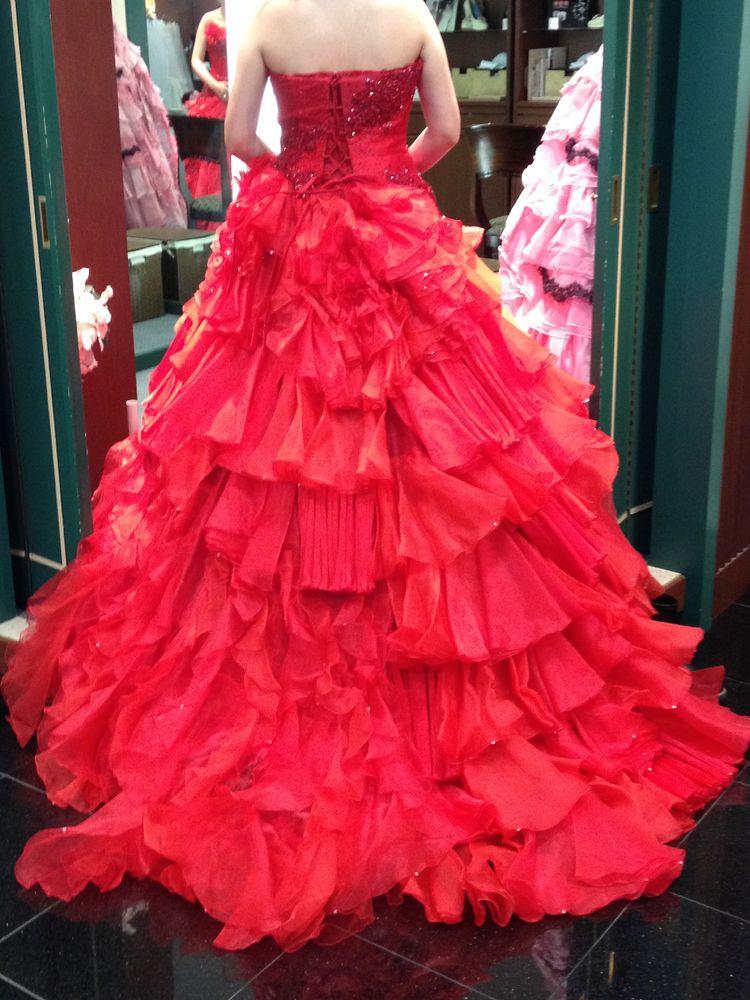 真っ赤なバラのドレス