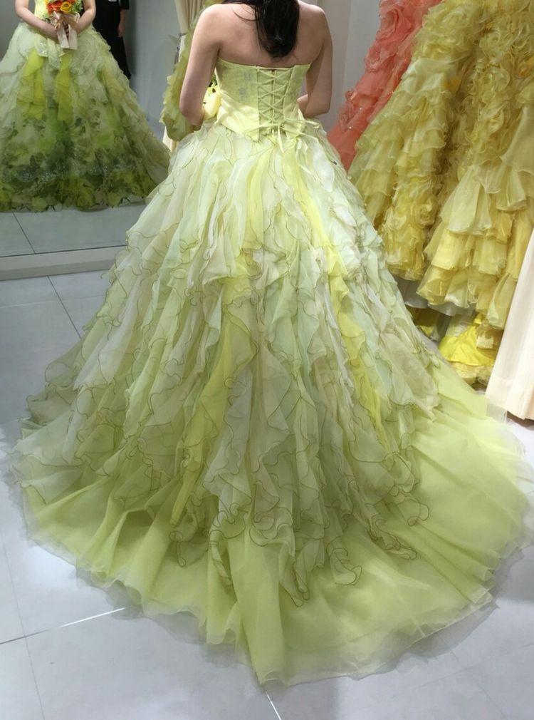 バラの花の絵が施された珍しいドレス」緑色のドレスを探している